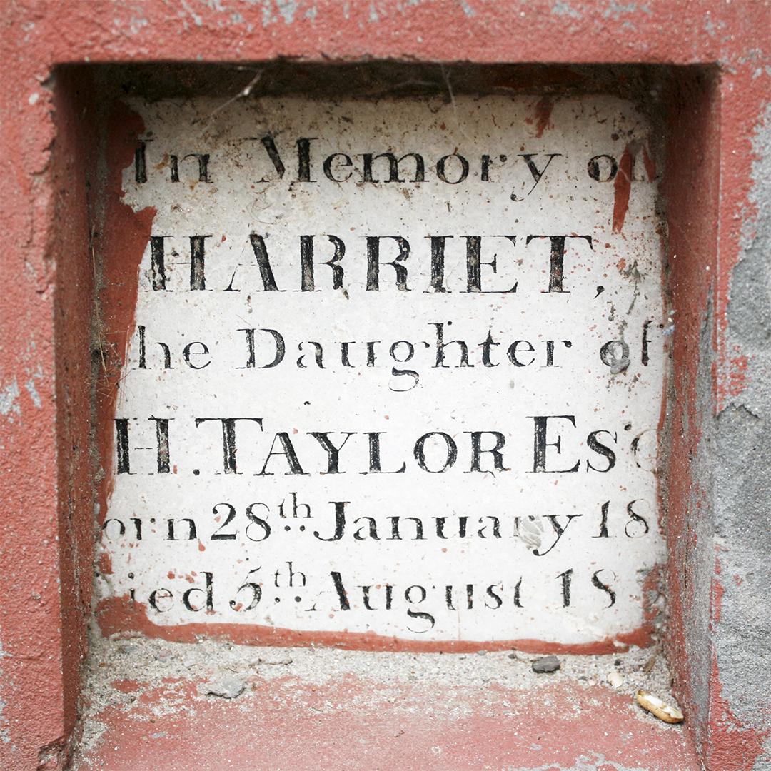 In memory of Harriet